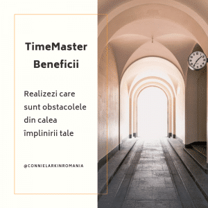 timemaster course with Connie Larkin